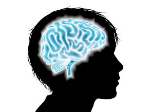 Better Business Brain